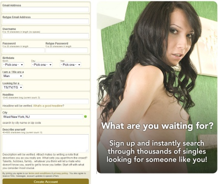 Asian Shemale Dating join
