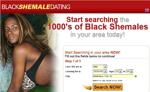 EHarmony.com Black Women Category