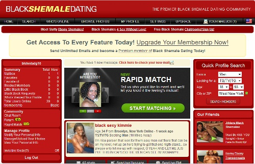 Black Shemale Dating members